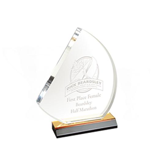 Award Type 2